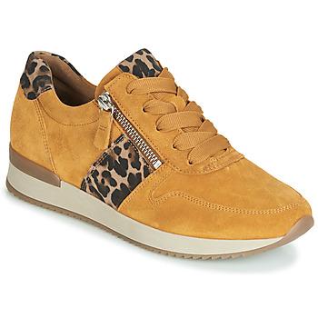Sapatos Mulher Sapatilhas Gabor 3342010 Mostarda