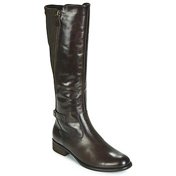 Sapatos Mulher Botas Gabor 3164228 Castanho
