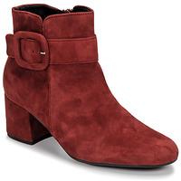 Sapatos Mulher Botins Gabor 3581610 Vermelho