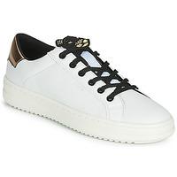 Sapatos Mulher Sapatilhas Geox D PONTOISE Branco / Cobre