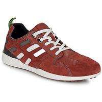 Sapatos Homem Sapatilhas Geox U SNAKE.2 Castanho / Tijolo