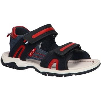Sapatos Rapaz Sandálias Levi's VMIA0030S DAVENPORT 0290 NAVY-RED 30 Azul