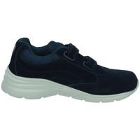 Sapatos Mulher Sapatilhas J´hayber  Azul