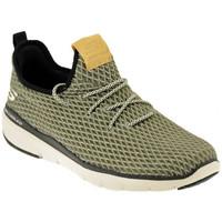 Sapatos Homem Sapatilhas Skechers