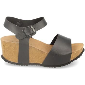 Sapatos Mulher Sandálias Shoes&blues M-77 Negro
