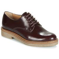 Sapatos Mulher Sapatos Kickers OXFORK Bordô