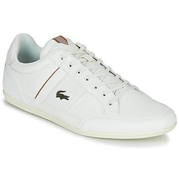 Sapatos Homem Sapatilhas Lacoste CHAYMON 319 1 Branco