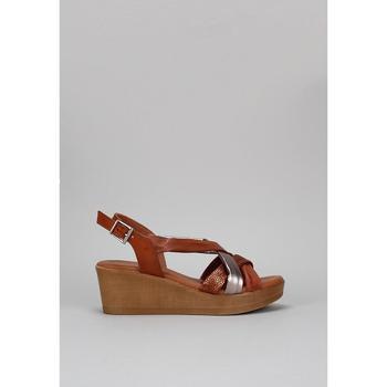 Sapatos Mulher Sandálias Sandra Fontan GOLFO Castanho