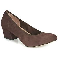 Sapatos Mulher Escarpim Perlato 10366-CAM-NUT Castanho