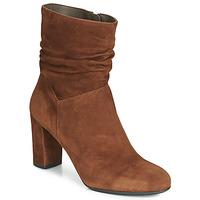 Sapatos Mulher Botins Perlato 11265-CAM-COGNAC Conhaque