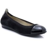Sapatos Mulher Sapatos & Richelieu Marroquí Sánchez 19062 Preto