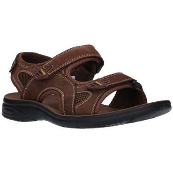 Sapatos Homem Sandálias desportivas Paredes VP18142 MA Hombre Marron marron