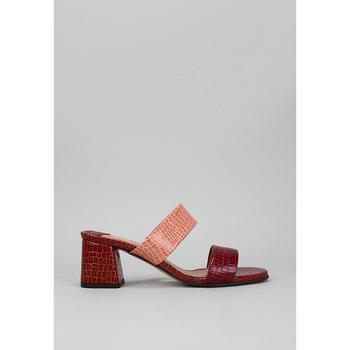 Sapatos Mulher Chinelos Roberto Torretta  Bordô
