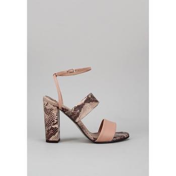 Sapatos Mulher Sandálias Roberto Torretta VIPER Bege