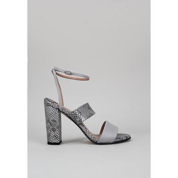 Sapatos Mulher Sandálias Roberto Torretta VIPER Cinza