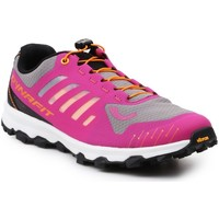 Sapatos Mulher Sapatos de caminhada Dynafit WS Feline Vertical Cinzento,Cor-de-rosa