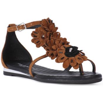 Sapatos Mulher Sandálias Sono Italiana CROSTA CUIO Nero