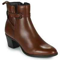 Sapatos Mulher Botins Betty London LAVANDA Conhaque