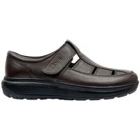 Sapatos Homem Sandálias Joya FISHERMAN S COFFEE