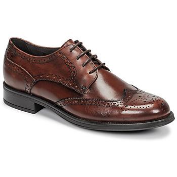 Sapatos Homem Sapatos Carlington LOUVIAN Castanho