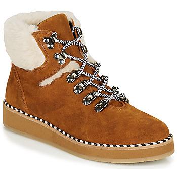 Sapatos Mulher Botas baixas Ippon Vintage RIDE LAND Camel