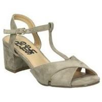 Sapatos Mulher Sandálias Refresh 64330 Marron