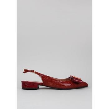 Sapatos Mulher Sandálias Roberto Torretta VARIETY Vermelho