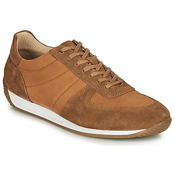 Sapatos Homem Sapatilhas Casual Attitude LARY Camel