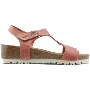 Sapatos Mulher Sandálias Interbios SANDÁLIAS  W 2019 TEJA