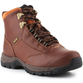 Sapatos Mulher Botas baixas Ariat Berwick lace GTX Insulated 10016298 brown