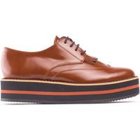 Sapatos Mulher Sapatos Nae Vegan Shoes Sandrabrown castanho