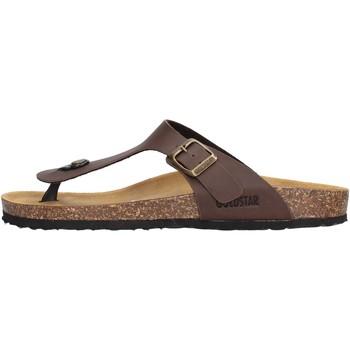 Sapatos Homem Chinelos Gold Star - Infradito marrone 1830 MARRONE