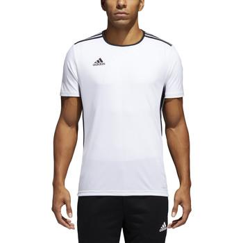 Textil Homem T-Shirt mangas curtas adidas Originals - T-shirt bianco CD8438 BIANCO