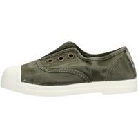 Sapatos Rapaz Sapatilhas Natural World - Scarpa elast verder 470E-622