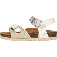 Sapatos Rapariga Sandálias Gold Star - Sandalo platino 1846L