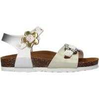 Sapatos Rapariga Sandálias Gold Star - Sandalo argento 1846VF