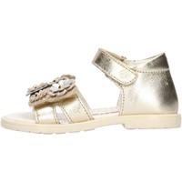 Sapatos Rapariga Sandálias Falcotto - Sandalo platino PUPPY PLATINO