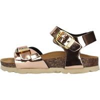 Sapatos Rapariga Sandálias Gold Star - Sandalo bronzo 1846TT BRONZO