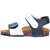 Sapatos Rapaz Sandálias Gold Star - Sandalo blu/rosso 8852J BLU