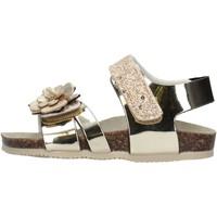 Sapatos Rapariga Sandálias Gold Star - Sandalo platino 8864X PLATINO
