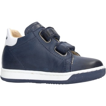 Sapatos Rapaz Sapatilhas Falcotto - Polacchino v blu ADAM VL BLU