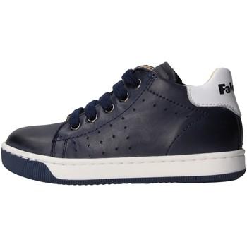 Sapatos Rapaz Sapatilhas Falcotto - Polacchino 9101 blu SMITH