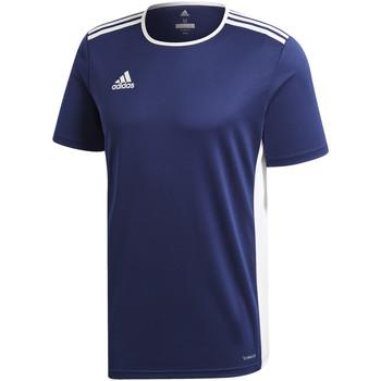Textil Rapaz T-Shirt mangas curtas adidas Originals - T-shirt blu CF1036 J BLU