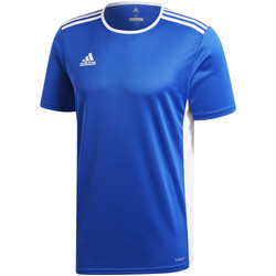Textil Rapaz T-Shirt mangas curtas adidas Originals - T-shirt azzurro CF1037 AZZURRO