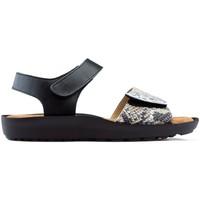 Sapatos Mulher Sandálias Dtorres Sandálias DORRES BLANES 06 PRATA