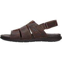Sapatos Homem Sandálias Valleverde - Sandalo testa di moro 20831 MARRONE