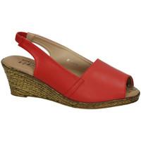 Sapatos Mulher Sandálias H.f Shoes  Vermelho