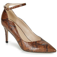 Sapatos Mulher Escarpim André LIDOO Castanho