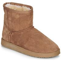 Sapatos Mulher Botas baixas André TOUSNOW Camel