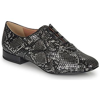 Sapatos Mulher Sapatos André VIOLETTE Cinza
